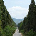 Vento Etrusco - Bolgheri